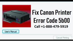 Canon printer error 5B00