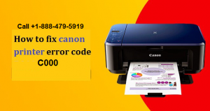 canon printer error c000