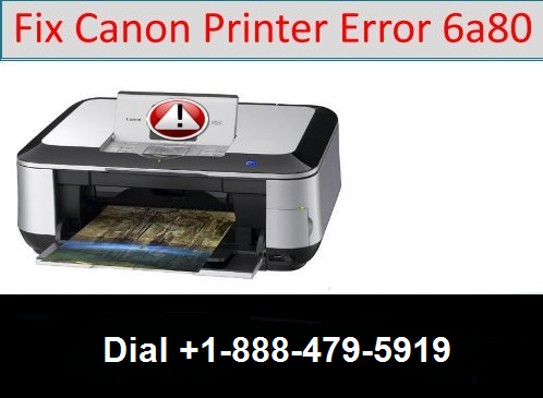 canon printer error 6A80