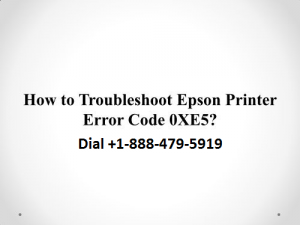 Epson Printer Error Code 0xe5