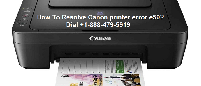 Canon printer error e59