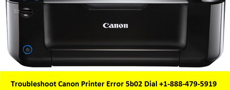 Canon Printer Error 5b02