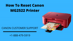 How To Reset Canon MG2522 Printer
