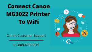 Canon MG3022 printer