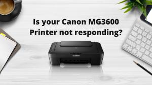 Canon MG3600 Printer not responding